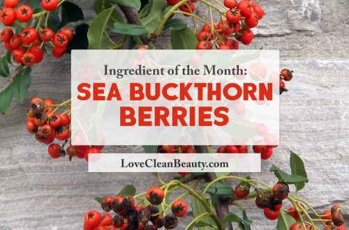 clean beauty ingredient: sea buckthorn berries