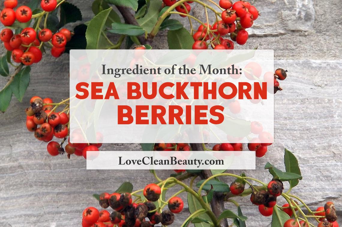 clean beauty ingredient: sea buckthorn berries